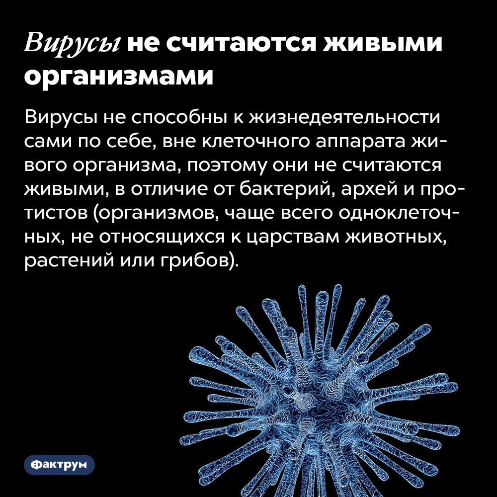 Вирусы несчитаются живыми организмами. Вирусы не способны к жизнедеятельности сами по себе, вне клеточного аппарата живого организма, поэтому они не считаются живыми, в отличие от бактерий, архей и протистов (организмов, чаще всего одноклеточных, не относящихся к царствам животных, растений или грибов).