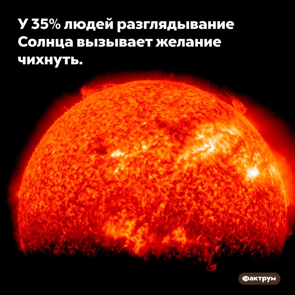 У35%людей разглядывание Солнца вызывает желание чихнуть.