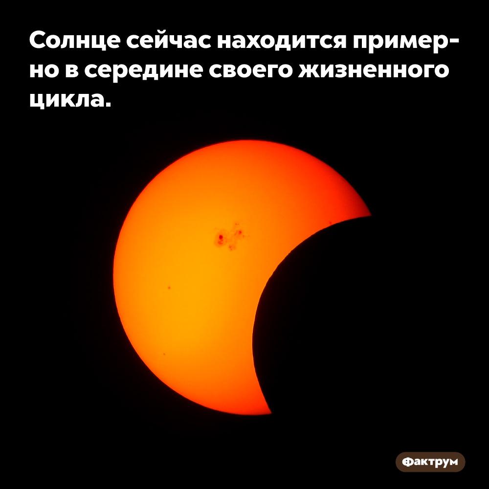 Солнце сейчас находится примерно всередине своего жизненного цикла.