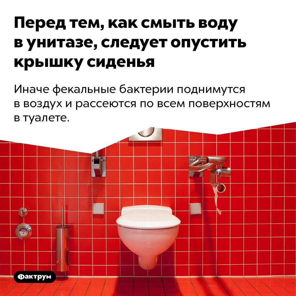 Перед тем, как смыть воду в унитазе, следует опустить крышку сиденья. Иначе фекальные бактерии поднимутся в воздух и рассеются по всем поверхностям в туалете.