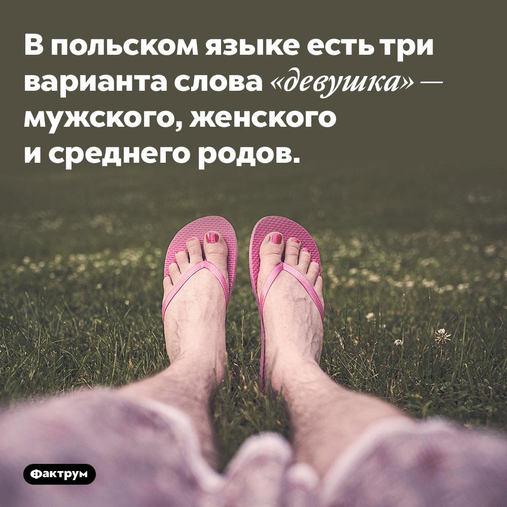 Впольском языке есть три варианта слова «девушка». Мужского, женского и среднего родов.