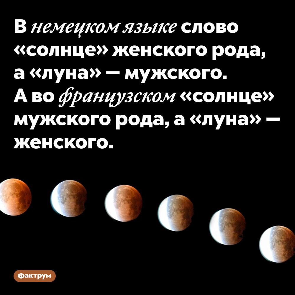 В немецком языке слово «солнце» женского рода, а «луна» — мужского. А во французском «солнце» мужского рода, а «луна» — женского.