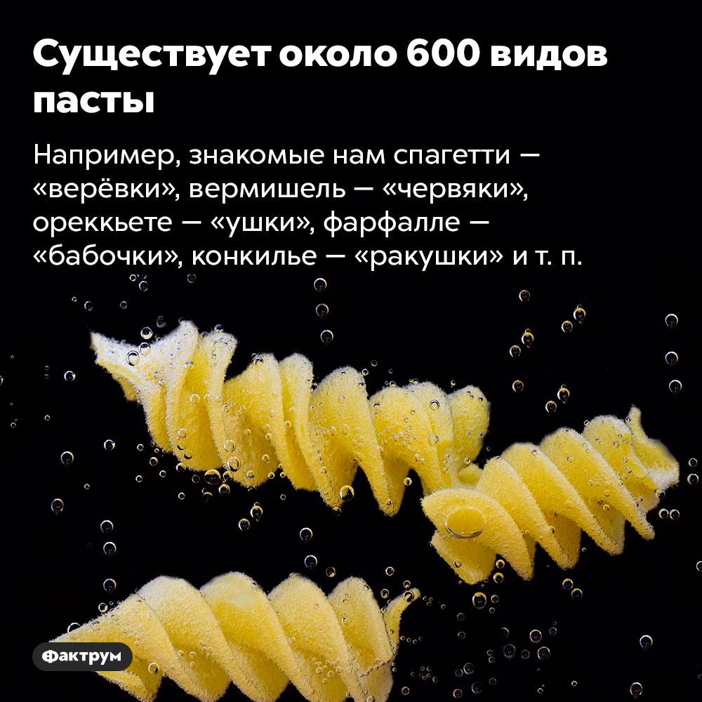 Существует около 600видов пасты. Например, знакомые нам спагетти — «верёвки», вермишель — «червяки», ореккьете — «ушки», фарфалле — «бабочки», конкилье — «ракушки» и т. п.