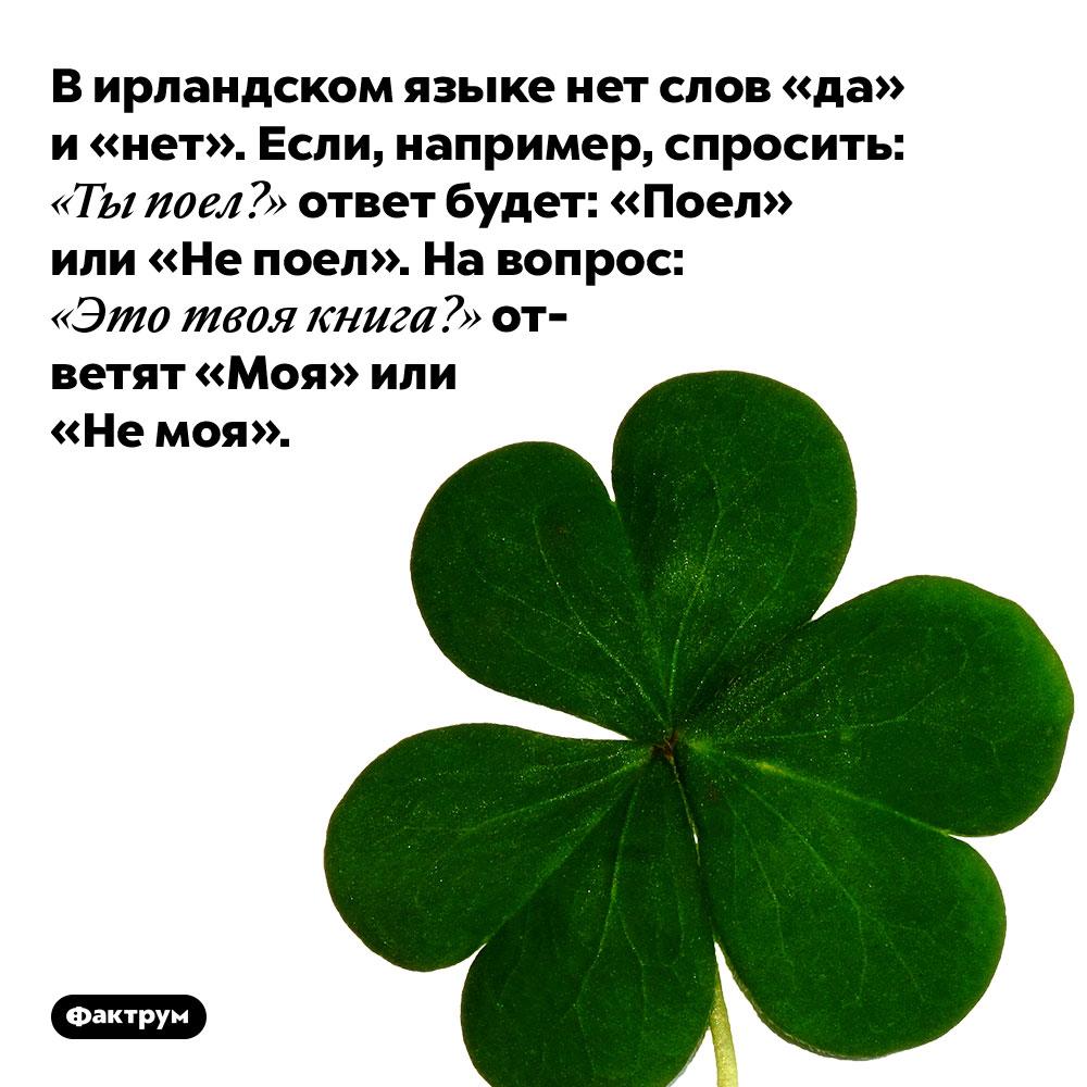 В ирландском языке нет слов «да» и «нет». Если, например, спросить: «Ты поел?» ответ будет: «Поел» или «Не поел». На вопрос: «Это твоя книга?» ответят «Моя» или «Не моя».