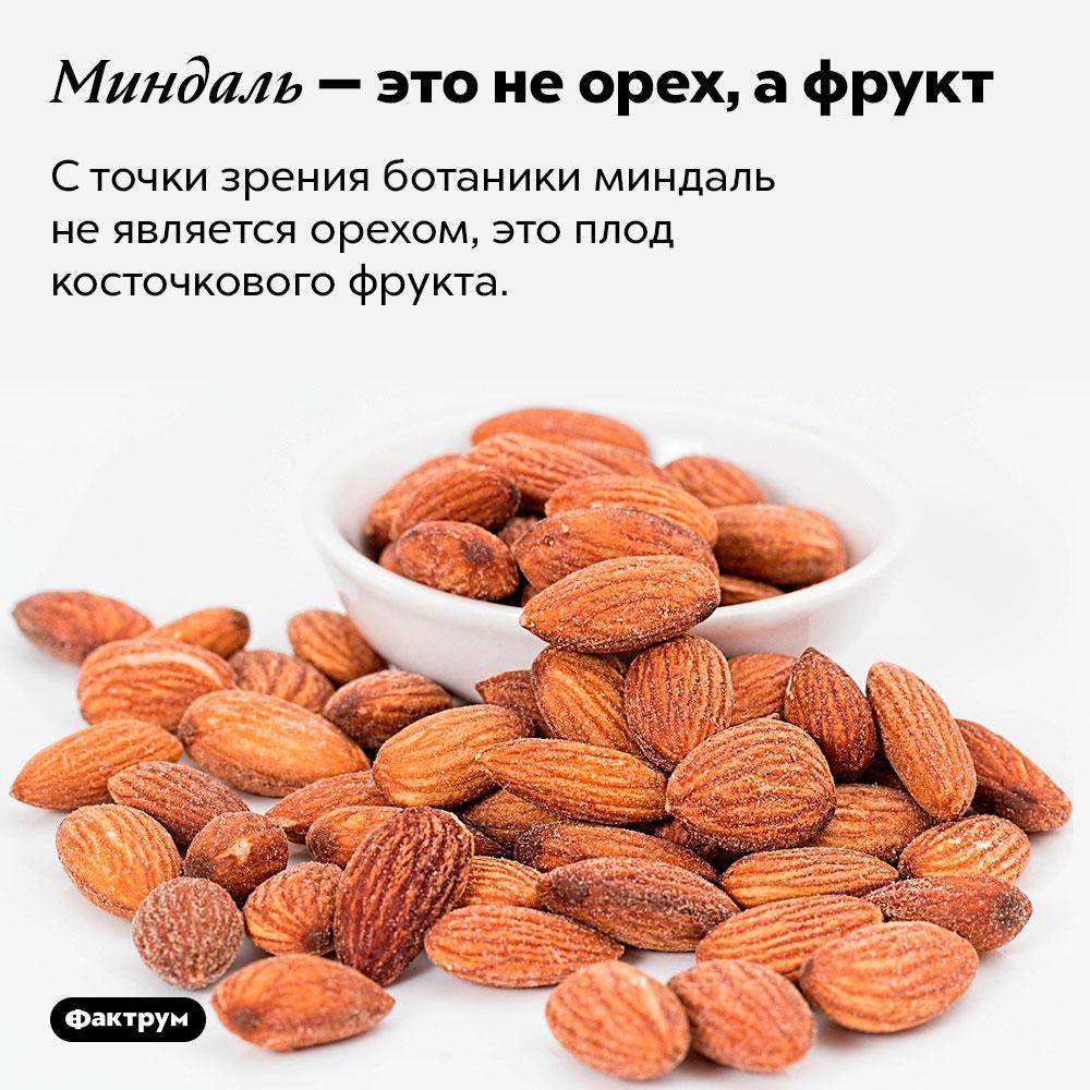Миндаль — это неорех, афрукт. С точки зрения ботаники миндаль не является орехом, это плод косточкового фрукта.