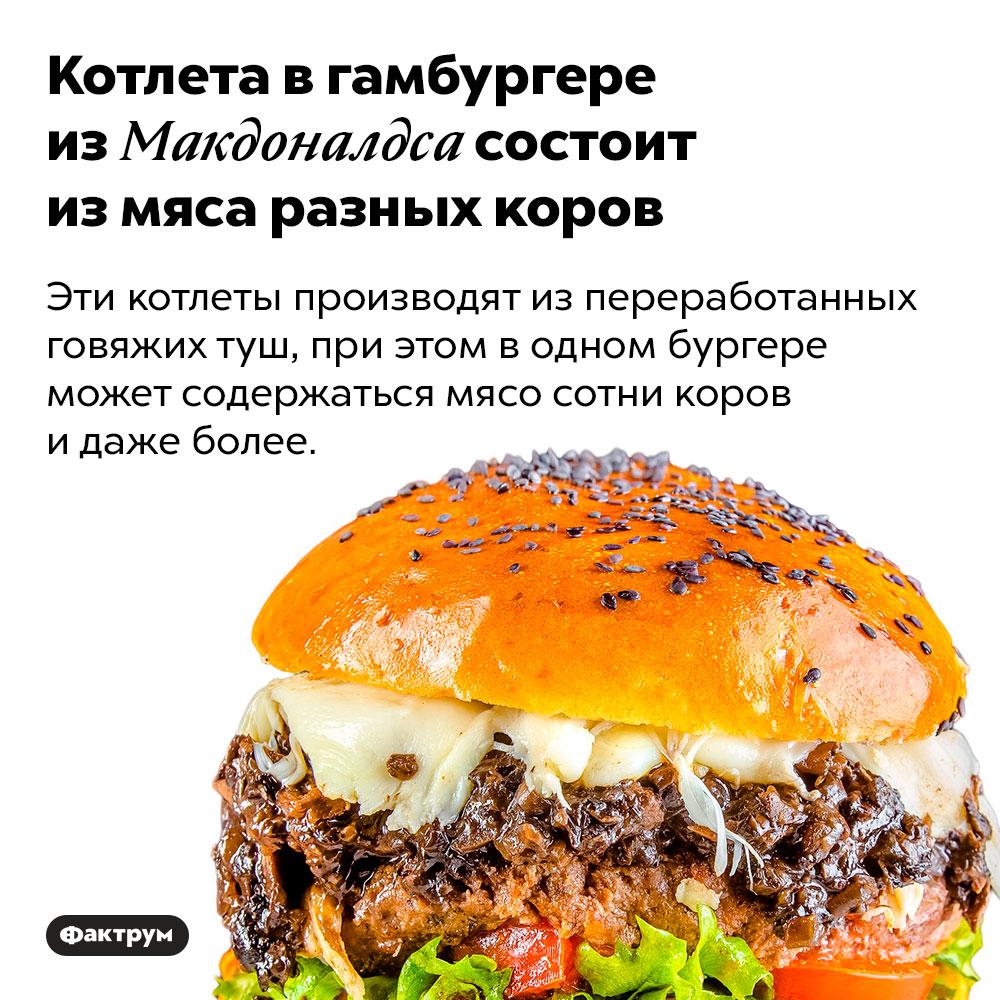Котлета вгамбургере изМакдоналдса состоит измяса разных коров. Эти котлеты производят из переработанных говяжих туш, при этом в одном бургере может содержаться мясо сотни коров и даже более.