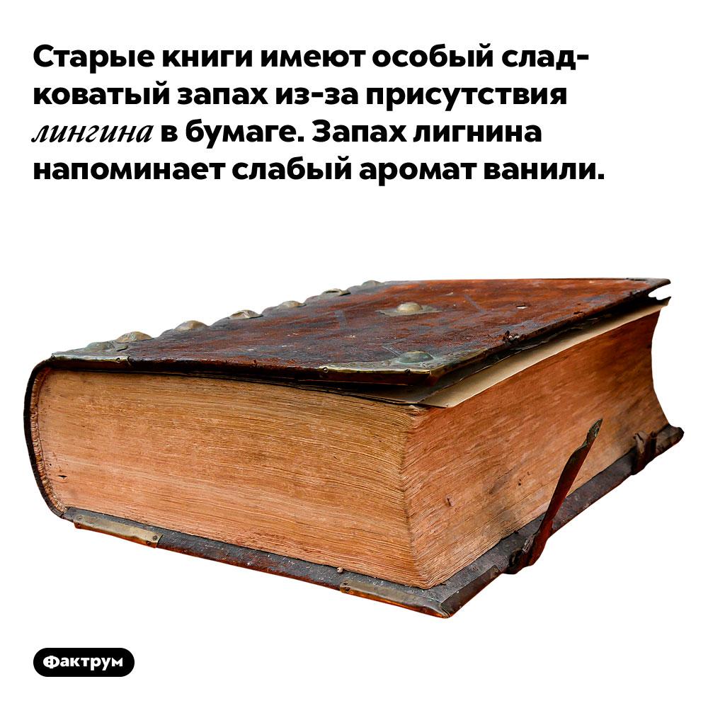 Старые книги имеют особый сладковатый запах из-за присутствия лигнина вбумаге. Запах лигнина напоминает слабый аромат ванили.