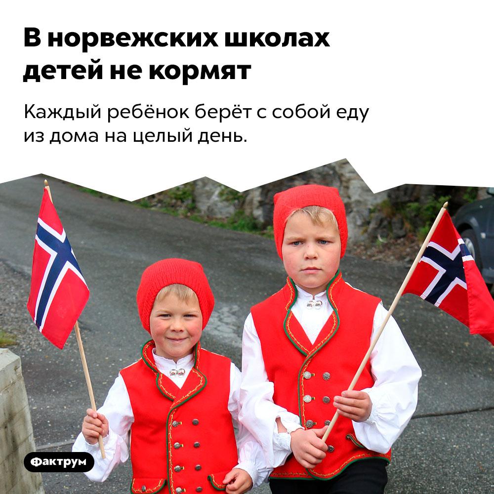 В норвежских школах детей не кормят. Каждый ребёнок берёт с собой еду из дома на целый день.