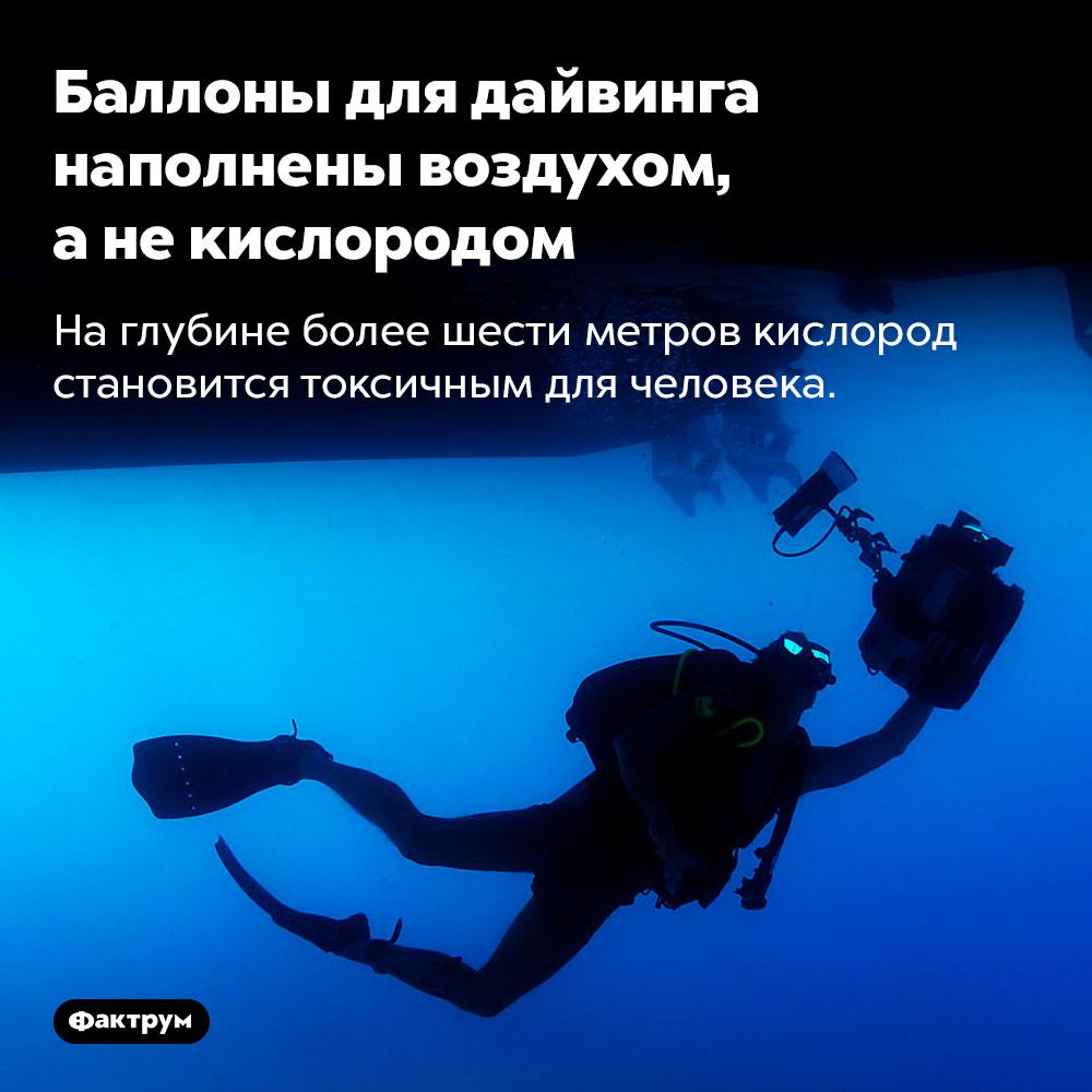 Баллоны для дайвинга наполнены воздухом, анекислородом. На глубине более шести метров кислород становится токсичным для человека.