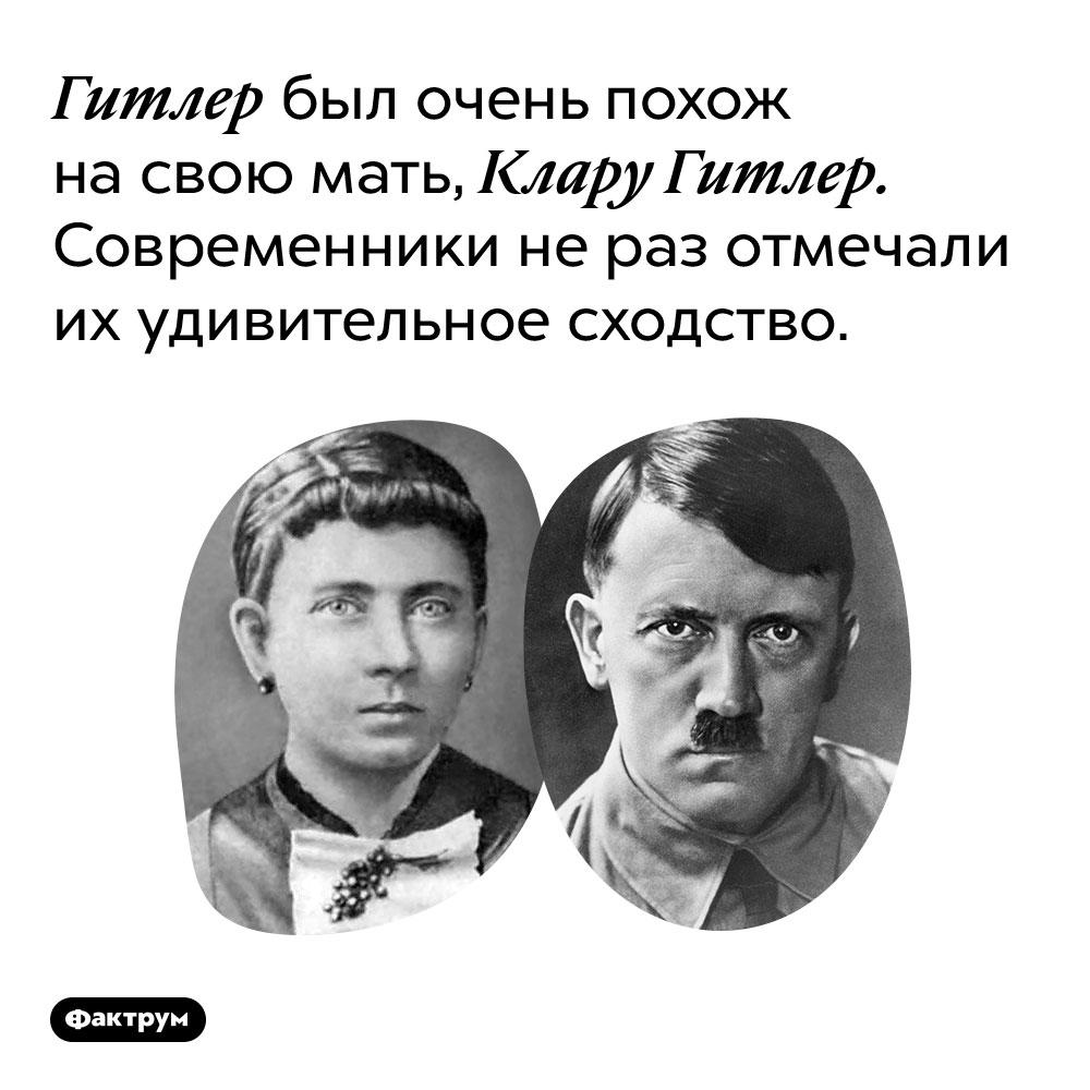 Гитлер был очень похож на свою мать, Клару Гитлер. Современники не раз отмечали их удивительное сходство.