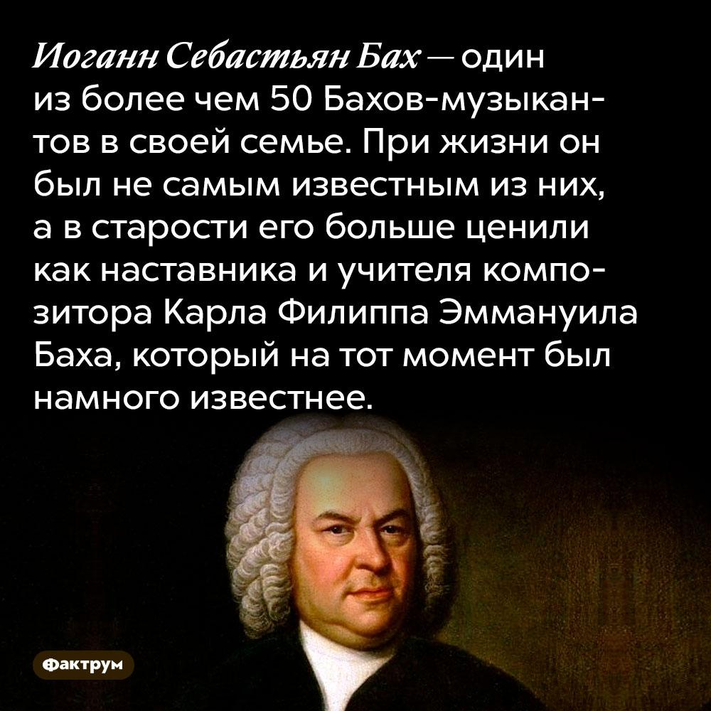 Иоганн Себастьян Бах — один из более чем 50 Бахов-музыкантов в своей семье. При жизни он был не самым известным из них, а в старости его больше ценили как наставника и учителя композитора Карла Филиппа Эммануила Баха, который на тот момент был намного известнее.