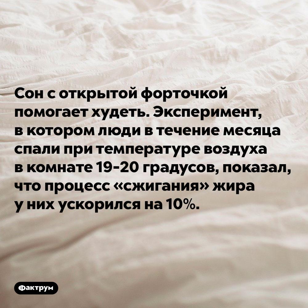 Сон соткрытой форточкой помогает худеть. Эксперимент, в котором люди в течение месяца спали при температуре воздуха в комнате 19-20 градусов, показал, что процесс «сжигания» жира у них ускорился на 10%.