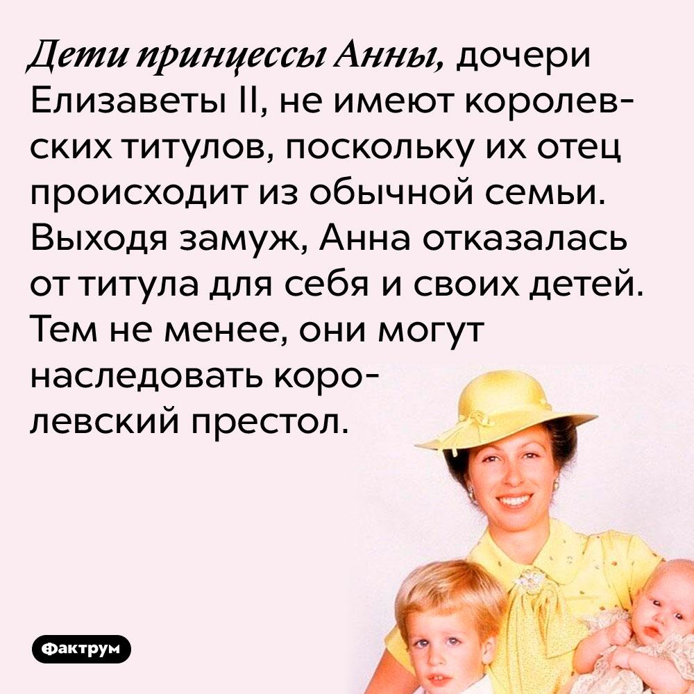Дети принцессы Анны, дочери Елизаветы II, не имеют королевских титулов, поскольку их отец происходит из обычной семьи и когда женился на принцессе, отказался от титула. Тем не менее, они могут наследовать королевский престол.