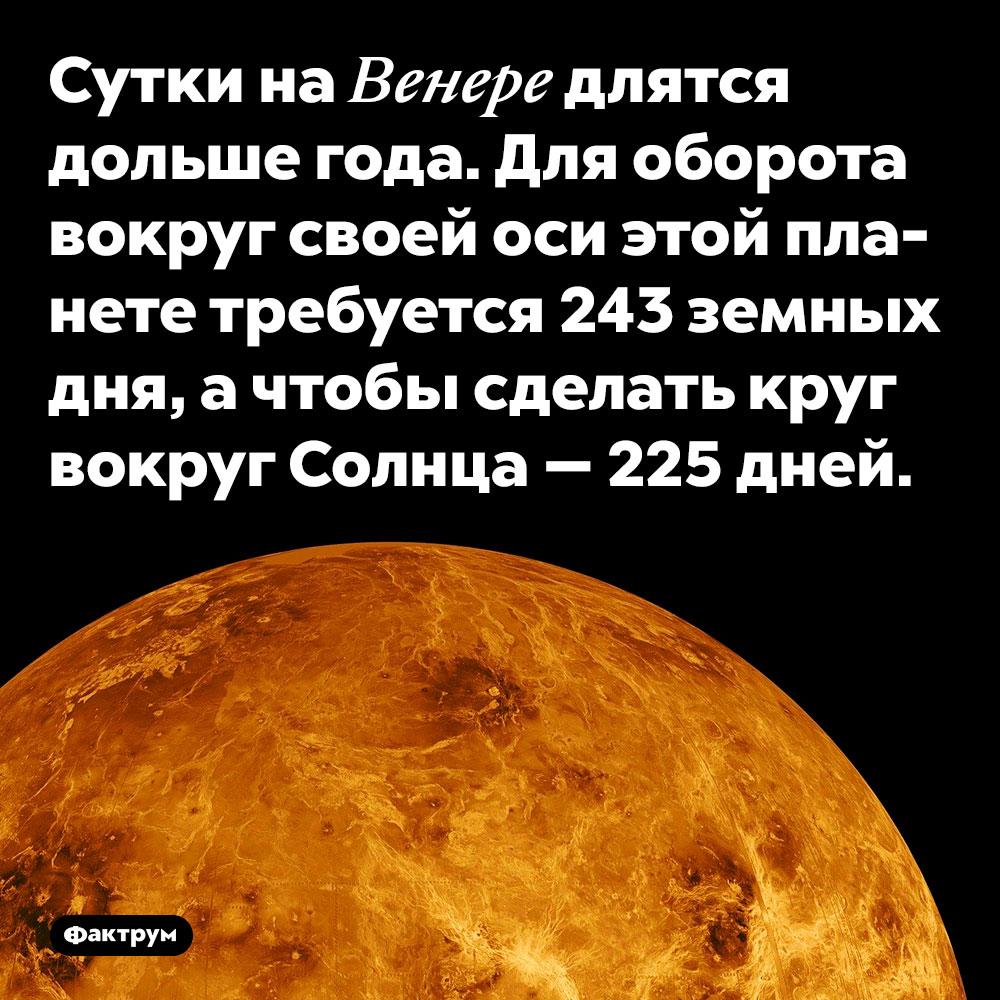 Сутки на Венере длятся дольше года. Для оборота вокруг своей оси этой планете требуется 243 земных дня, а чтобы сделать круг вокруг Солнца — 225 дней.