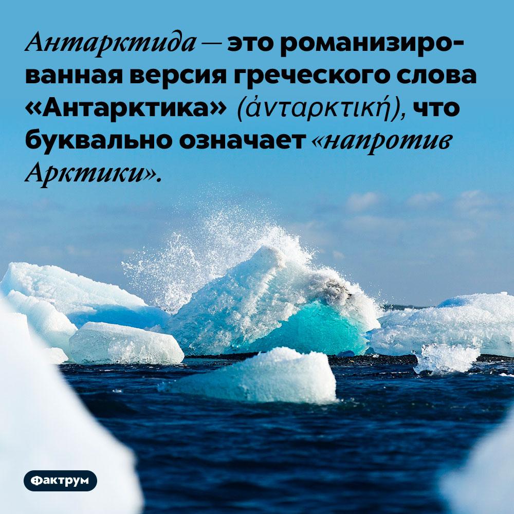 Антарктида — это романизированная версия греческого слова «Антарктика» (ἀνταρκτική). ...что буквально означает «напротив Арктики».