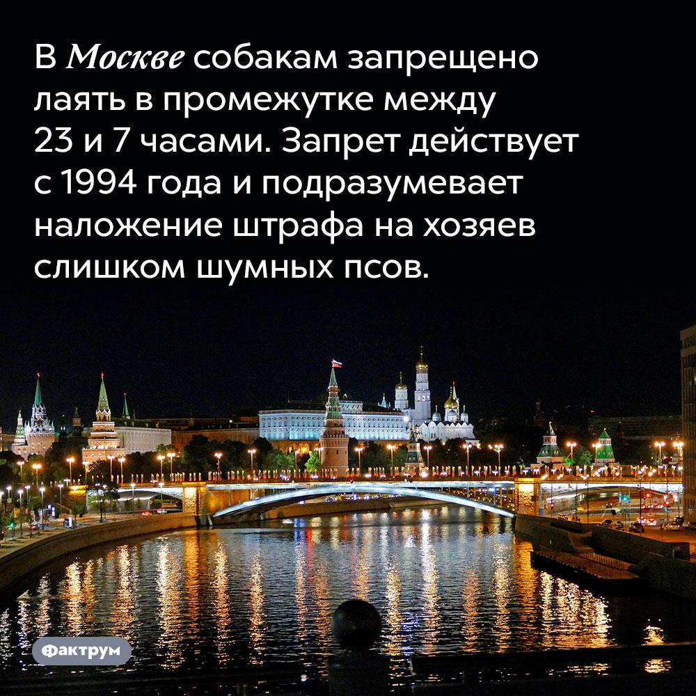 В Москве собакам запрещено лаять в промежутке между 23 и 7 часами. Запрет действует с 1994 года и подразумевает наложение штрафа на хозяев слишком шумных псов.