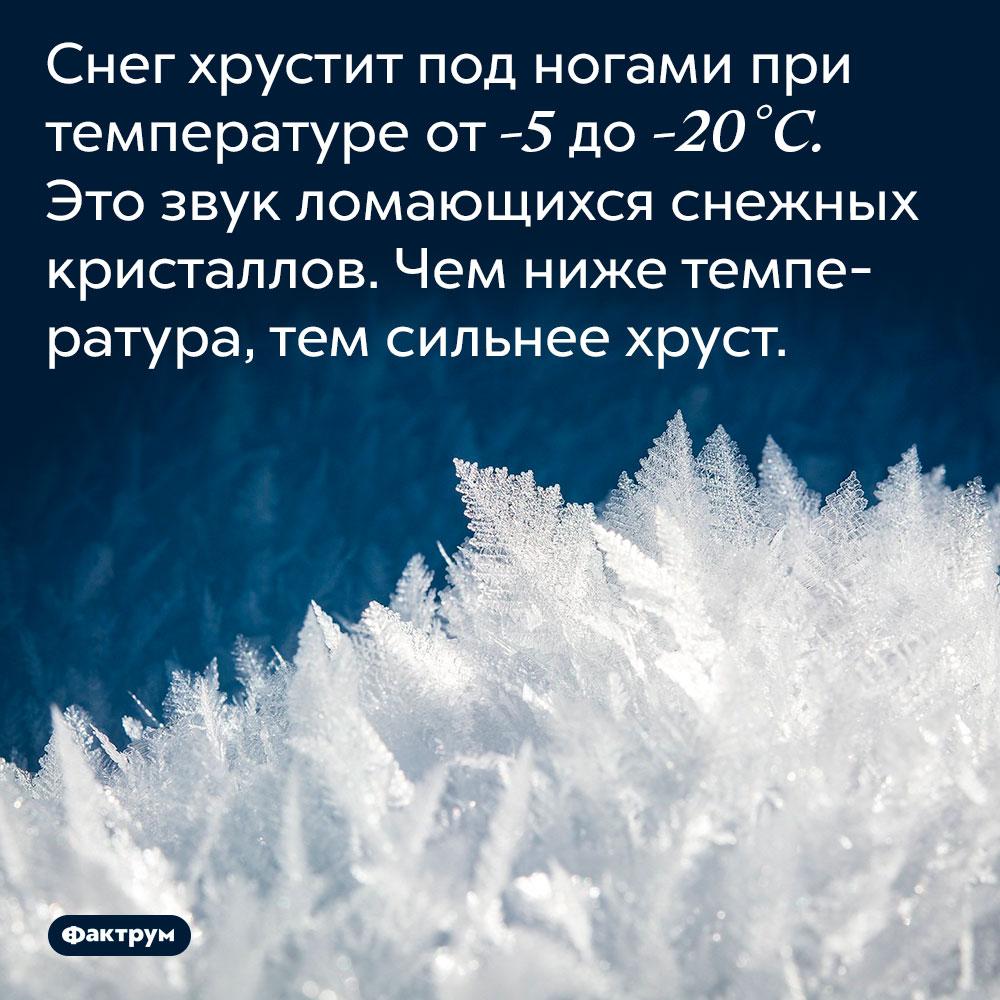 Снег хрустит под ногами при температуре от -5 до -20 °C. Это звук ломающихся снежных кристаллов. Чем ниже температура, тем сильнее хруст.