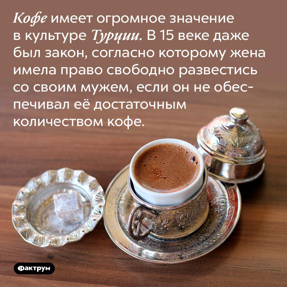 Кофе имеет огромное значение в культуре Турции. В 15 веке даже был закон, согласно которому жена имела право свободно развестись со своим мужем, если он не обеспечивал её достаточным количеством кофе.