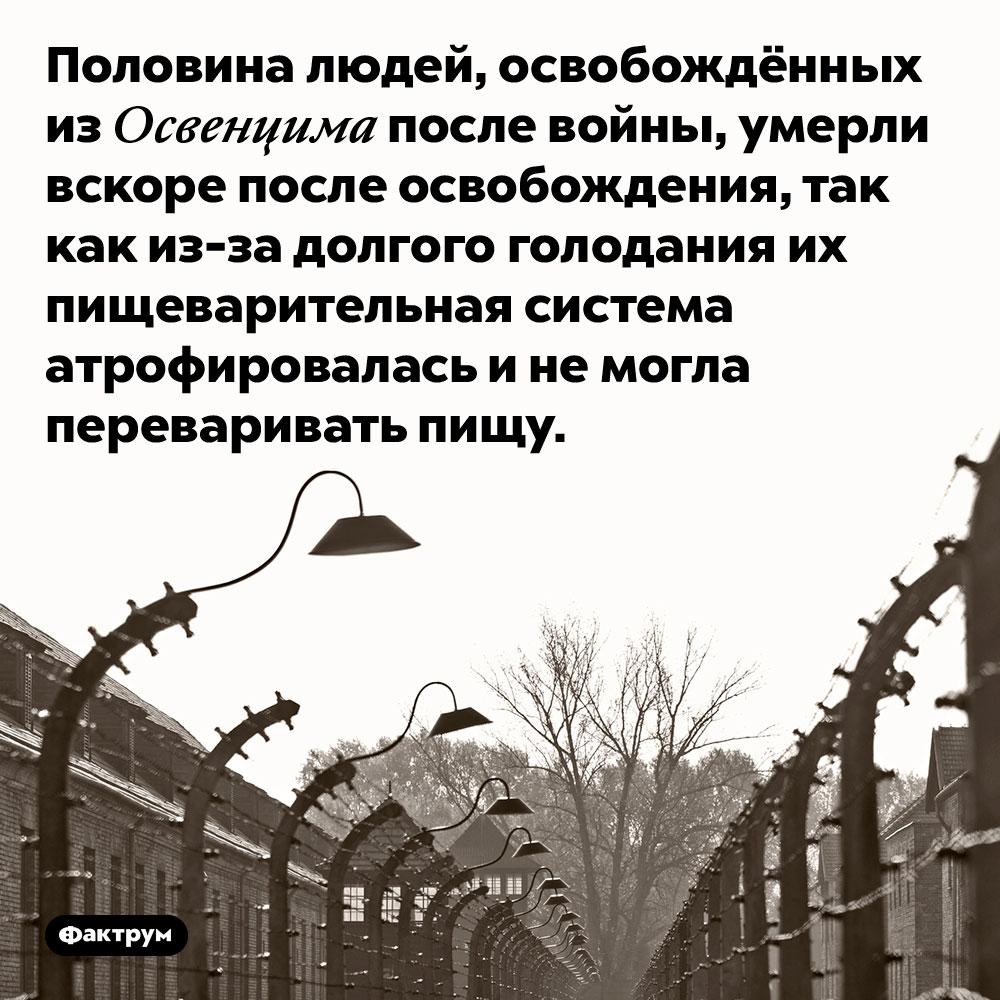 Половина людей, освобождённых из Освенцима после войны, умерли вскоре после освобождения, так как из-за долгого голодания их пищеварительная система атрофировалась и не могла переваривать пищу.