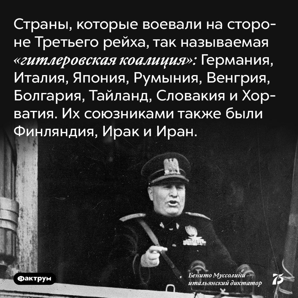 Страны, которые воевали на стороне Третьего рейха, так называемая «гитлеровская коалиция». Германия, Италия, Япония, Румыния, Венгрия, Болгария, Тайланд, Словакия и Хорватия. Их союзниками также были Финляндия, Ирак и Иран.