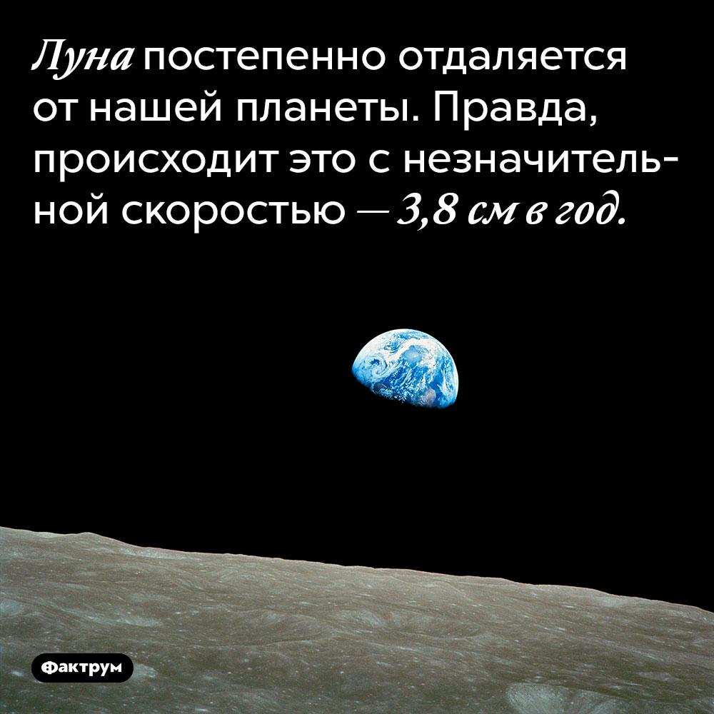 Луна постепенно отдаляется от нашей планеты. Правда, происходит это с незначительной скоростью — 3,8 см в год.