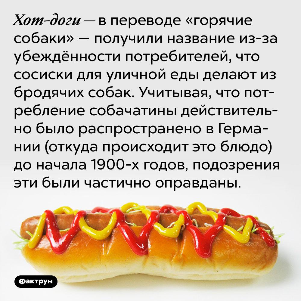 Хот-доги — в переводе «горячие собаки» — получили название из-за убеждённости потребителей, что сосиски для уличной еды делают из бродячих собак. Учитывая, что потребление собачатины действительно было распространено в Германии (откуда происходит это блюдо) до начала 1900-х годов, подозрения эти были частично оправданы.