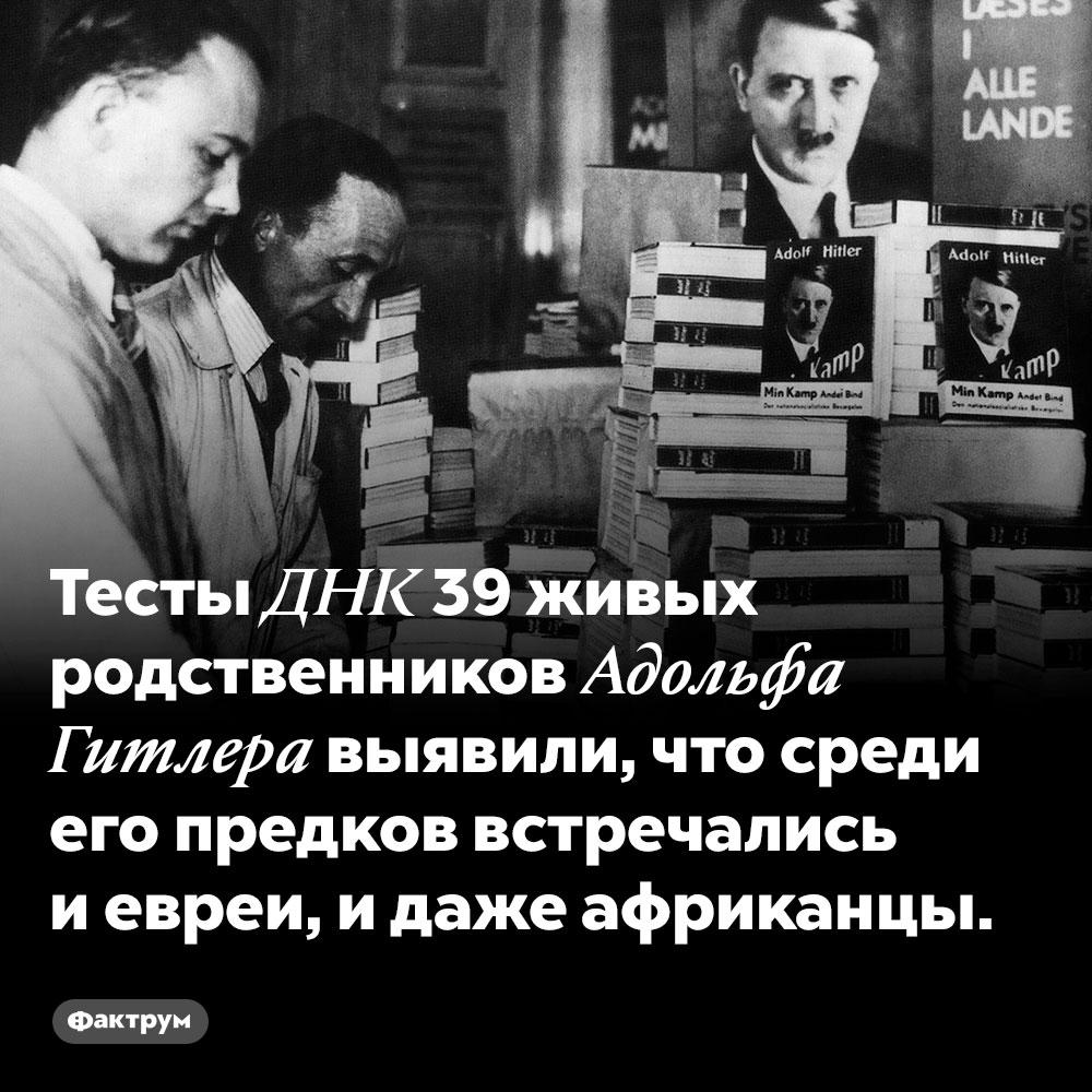 Тесты ДНК 39 живых родственников Адольфа Гитлера выявили, что среди его предков встречались и евреи, и даже африканцы.