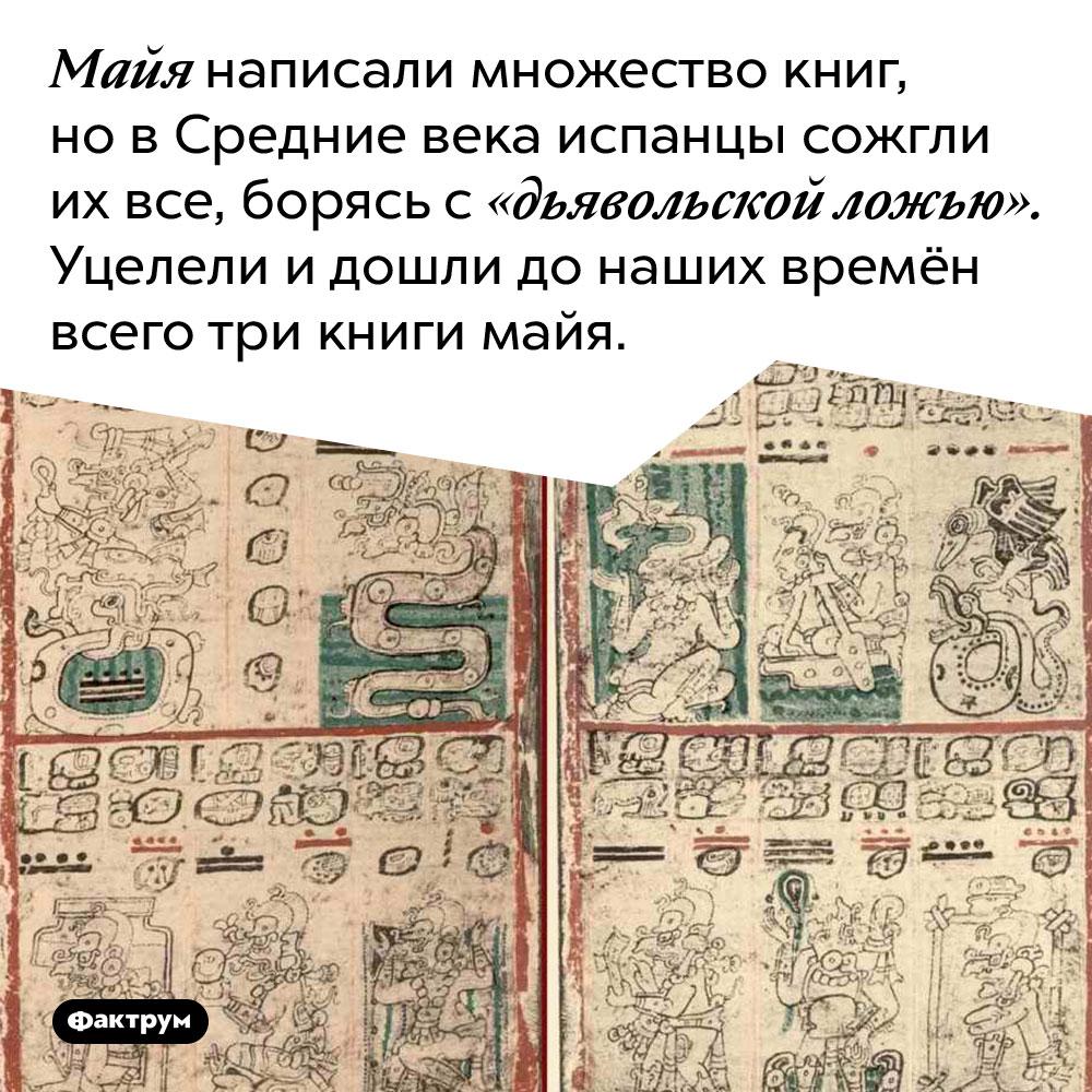 Майя написали множество книг, но в Средние века испанцы сожгли их все, борясь с «дьявольской ложью». Уцелели и дошли до наших времён всего три книги майя.