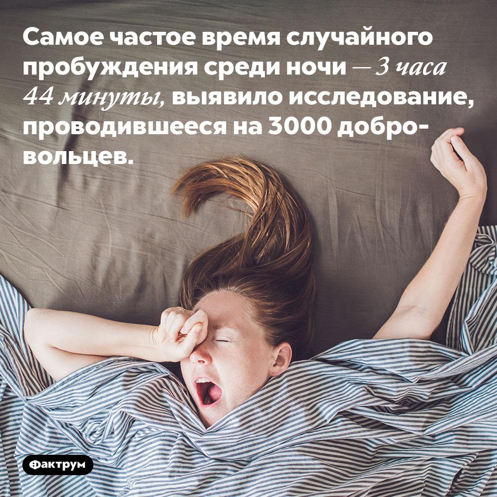 Самое частое время случайного пробуждения среди ночи — 3 часа 44 минуты, выявило исследование, проводившееся на 3000 добровольцев.