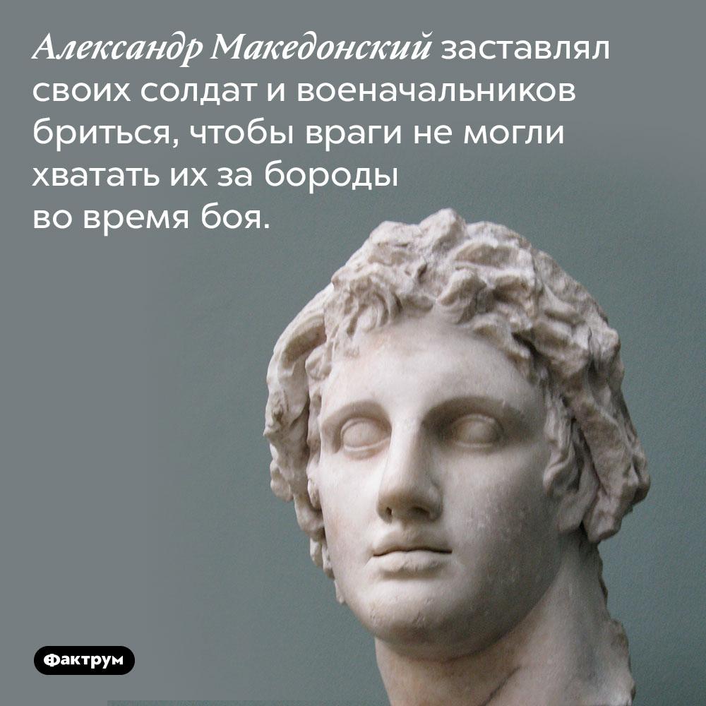 Александр Македонский заставлял своих солдат и военачальников бриться, чтобы враги не могли хватать их за бороды во время боя.