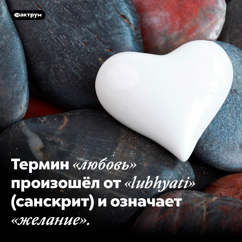 Термин «любовь» произошёл от «lubhyati» (санскрит) и означает «желание».