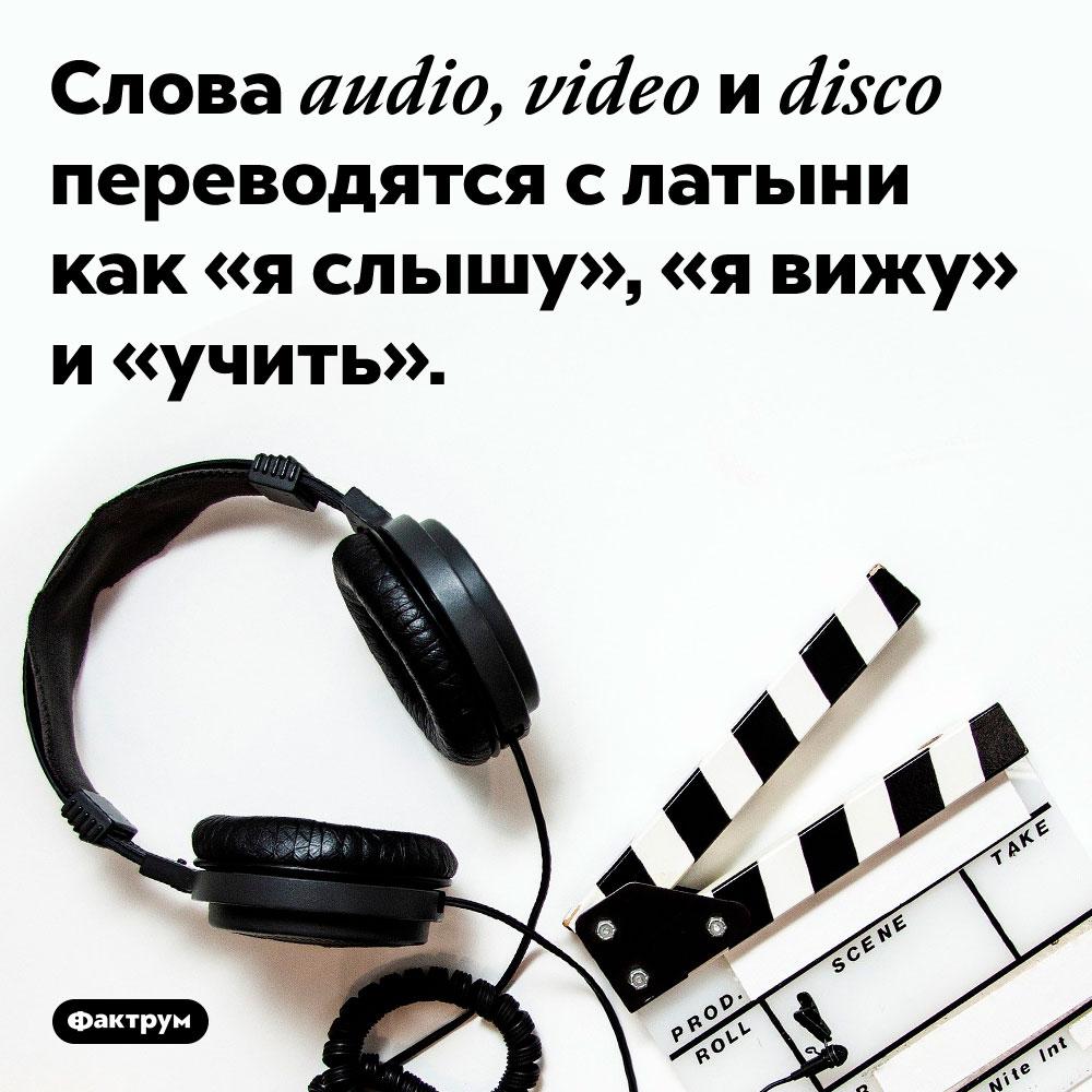 Слова audio, video и disco переводятся с латыни как «я слышу», «я вижу» и «учить».