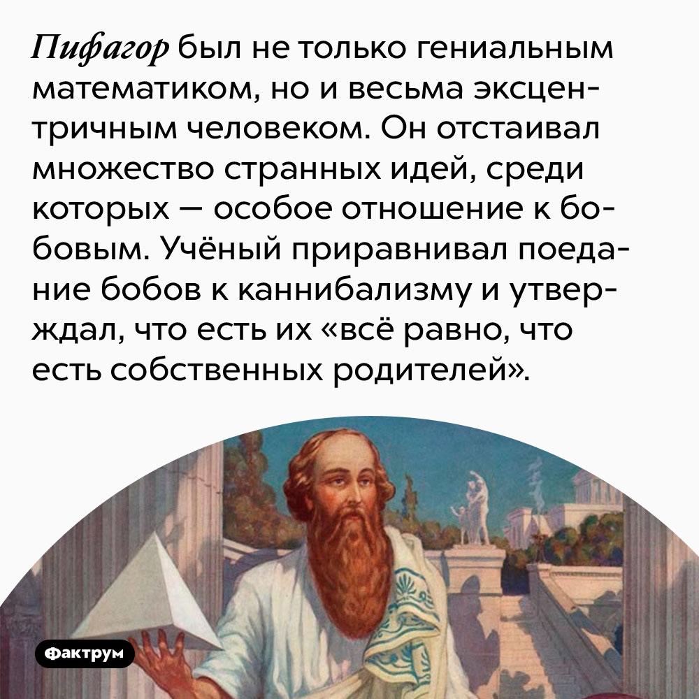 Пифагор был не только гениальным математиком, но и весьма эксцентричным человеком. Он отстаивал множество странных идей, среди которых — особое отношение к бобовым. Учёный приравнивал поедание бобов к каннибализму и утверждал, что есть их «всё равно, что есть собственных родителей».