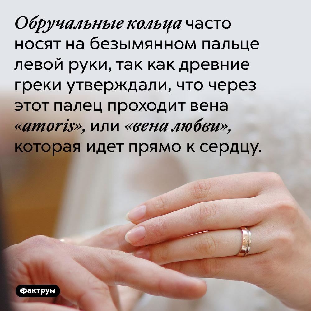 Обручальные кольца часто носят на безымянном пальце левой руки, так как древние греки утверждали, что через этот палец проходит вена «amoris», или «вена любви», которая идет прямо к сердцу.