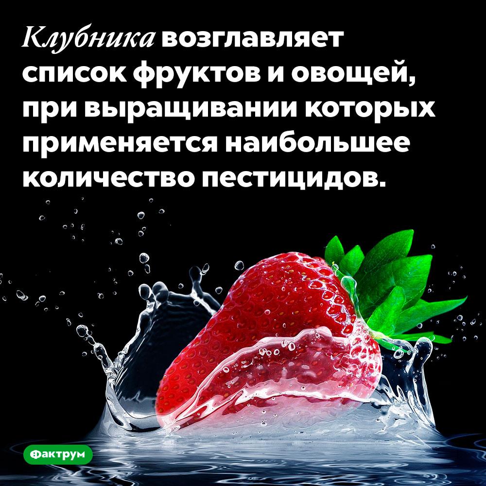 Клубника возглавляет список фруктов и овощей, при выращивании которых применяется наибольшее количество пестицидов.