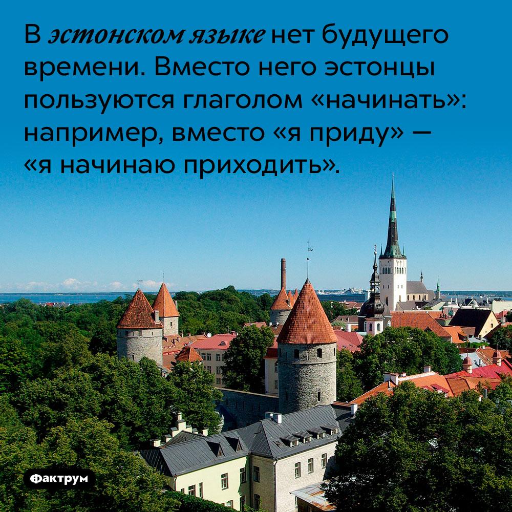 В эстонском языке нет будущего времени. Вместо него эстонцы пользуются глаголом «начинать»: например, вместо «я приду» — «я начинаю приходить».