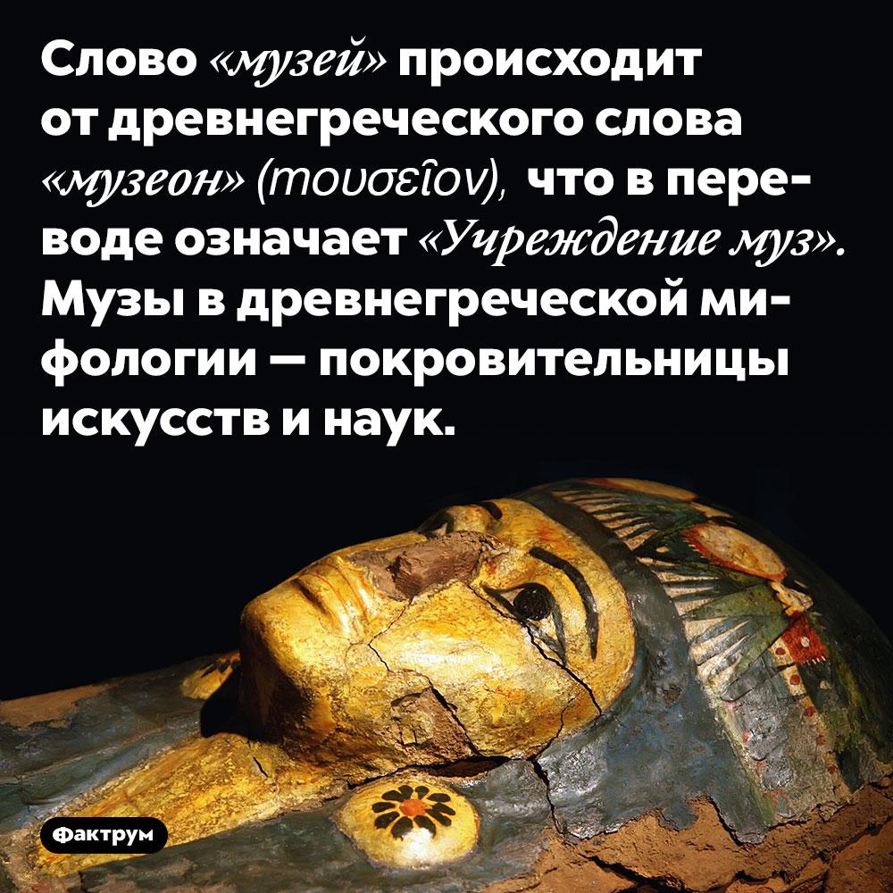 Слово «музей» происходит от древнегреческого слова «музеон» (mουσεῖον), что в переводе означает «Учреждение муз». Музы в древнегреческой мифологии — покровительницы искусств и наук.