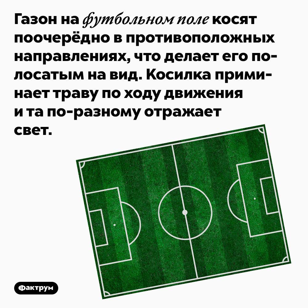 Газон на футбольном поле косят поочерёдно в противоположных направлениях, что делает его полосатым на вид. Косилка приминает траву по ходу движения и та по-разному отражает свет.