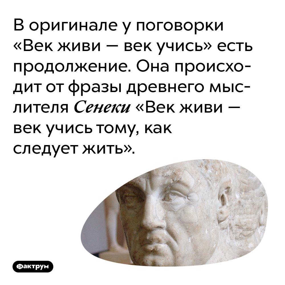 В оригинале у поговорки «Век живи — век учись» есть продолжение. Она происходит от фразы древнего мыслителя Сенеки «Век живи — век учись тому, как следует жить».