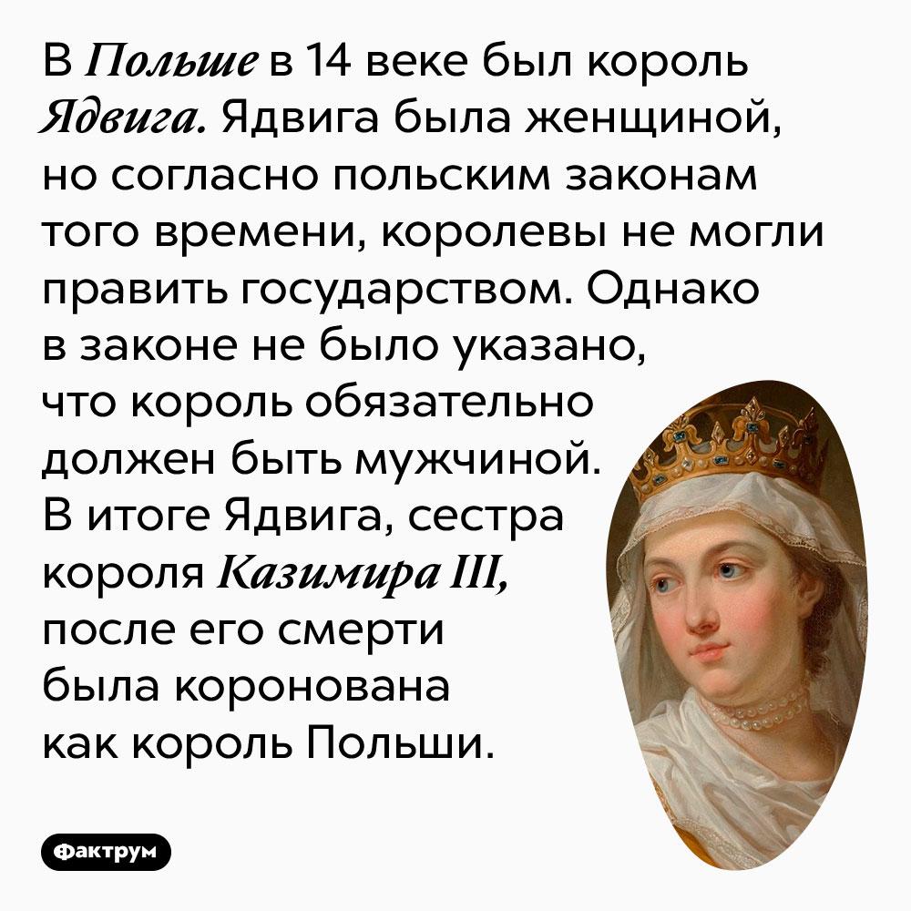 В Польше в 14 веке был король Ядвига. Ядвига была женщиной, но согласно польским законам того времени, королевы не могли править государством. Однако в законе не было указано, что король обязательно должен быть мужчиной. В итоге Ядвига, сестра короля Казимира III, после его смерти была коронована как король Польши.