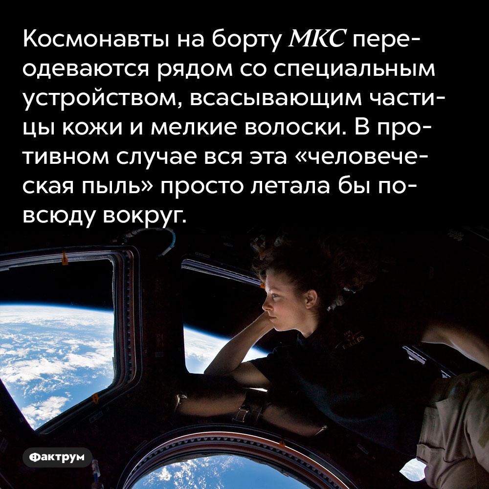 Космонавты на борту МКС переодеваются рядом со специальным устройством, всасывающим частицы кожи и мелкие волоски.  В противном случае вся эта «человеческая пыль» просто летала бы повсюду вокруг.