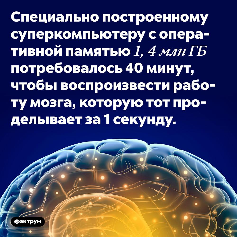 Специально построенному суперкомпьютеру с оперативной памятью 1, 4 млн Гб потребовалось 40 минут, чтобы воспроизвести работу мозга, которую тот проделывает за 1 секунду.
