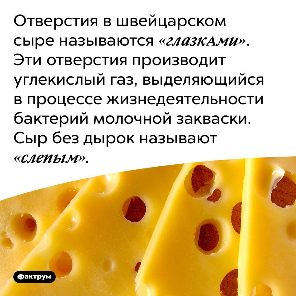 Отверстия в швейцарском сыре называются «глазкАми». Эти отверстия производит углекислый газ, выделяющийся в процессе жизнедеятельности бактерий молочной закваски. Сыр без дырок называют «слепым».