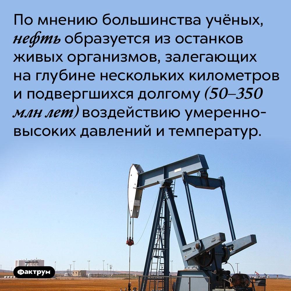 По мнению большинства учёных, нефть образуется из останков живых организмов, залегающих на глубине нескольких километров и подвергшихся долгому (50–350 млн лет) воздействию умеренно-высоких давлений и температур