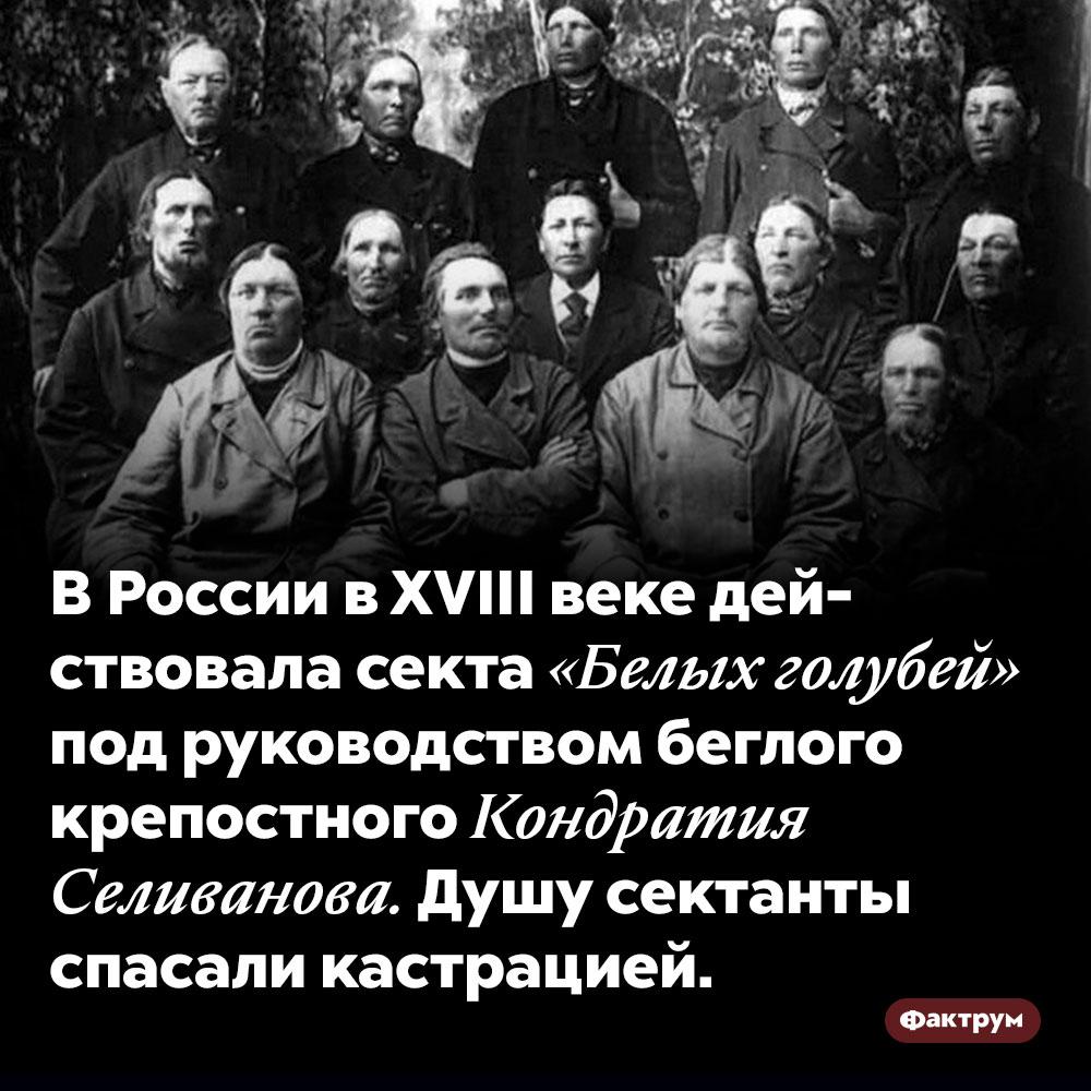 В России в XVIII веке действовала секта «Белых голубей» под руководством беглого крепостного Кондратия Селиванова. Душу сектанты спасали кастрацией.