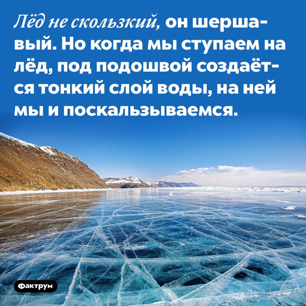Лёд не скользкий, он шершавый. Но когда мы ступаем на лёд, под подошвой создаётся тонкий слой воды, на ней мы и поскальзываемся.