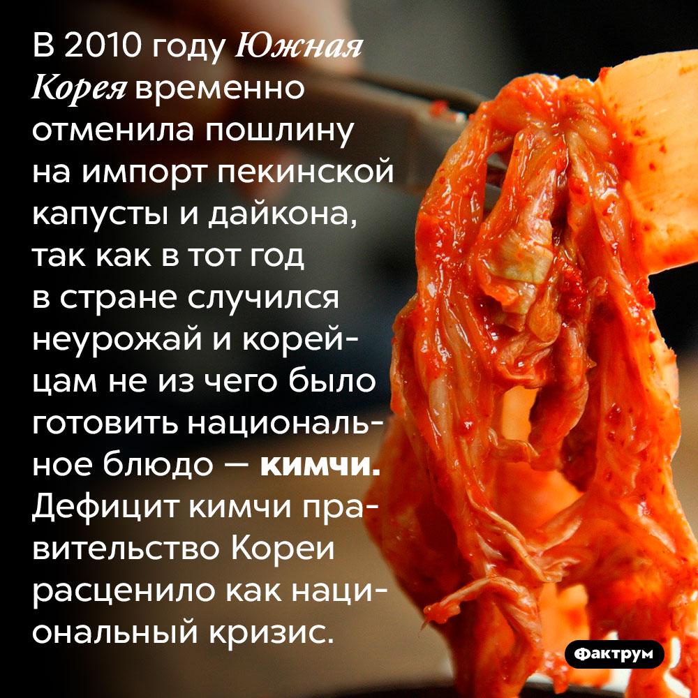 Для Южной Кореи отсутствие кимчи — национальный кризис. В 2010 году Южная Корея временно отменила пошлину на импорт пекинской капусты и дайкона, так как в тот год в стране случился неурожай и корейцам не из чего было готовить национальное блюдо — кимчи. Дефицит кимчи правительство Кореи расценило как национальный кризис.