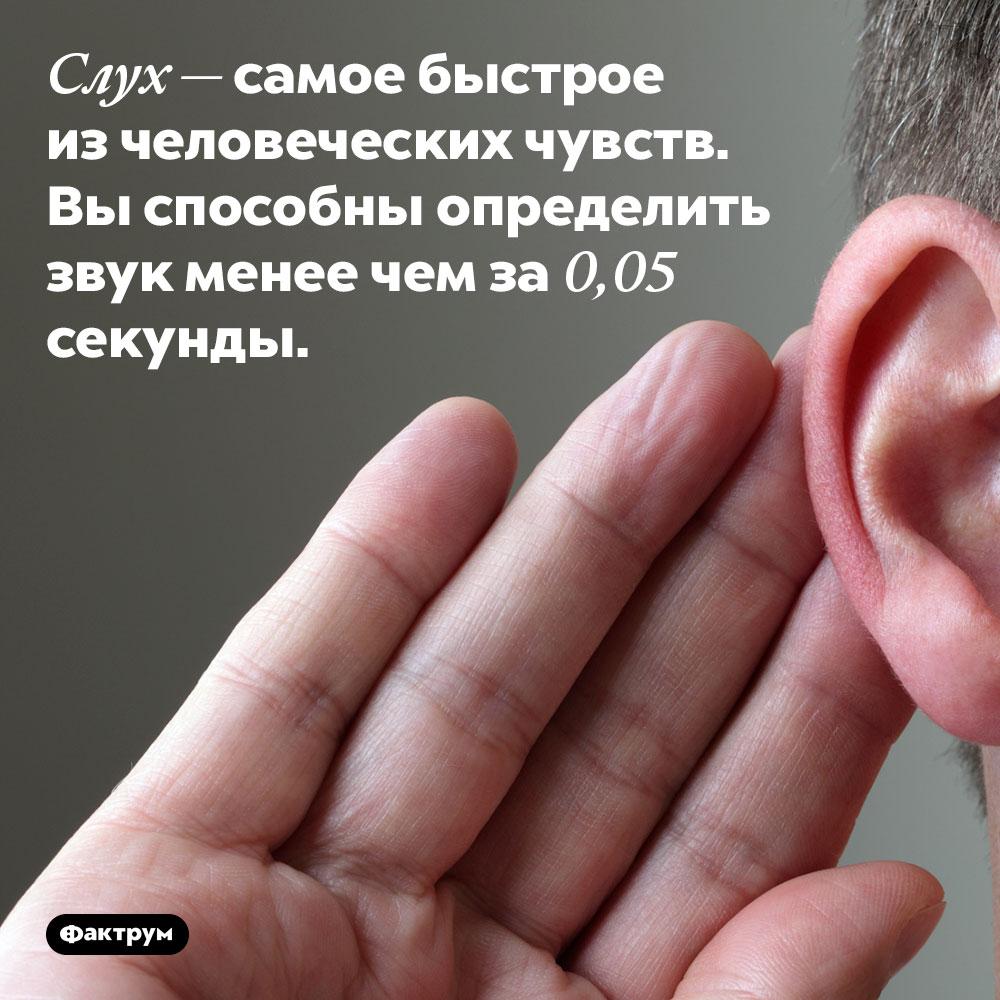 Слух — самое быстрое изчеловеческих чувств. Вы способны определить звук менее чем за 0,05 секунды.