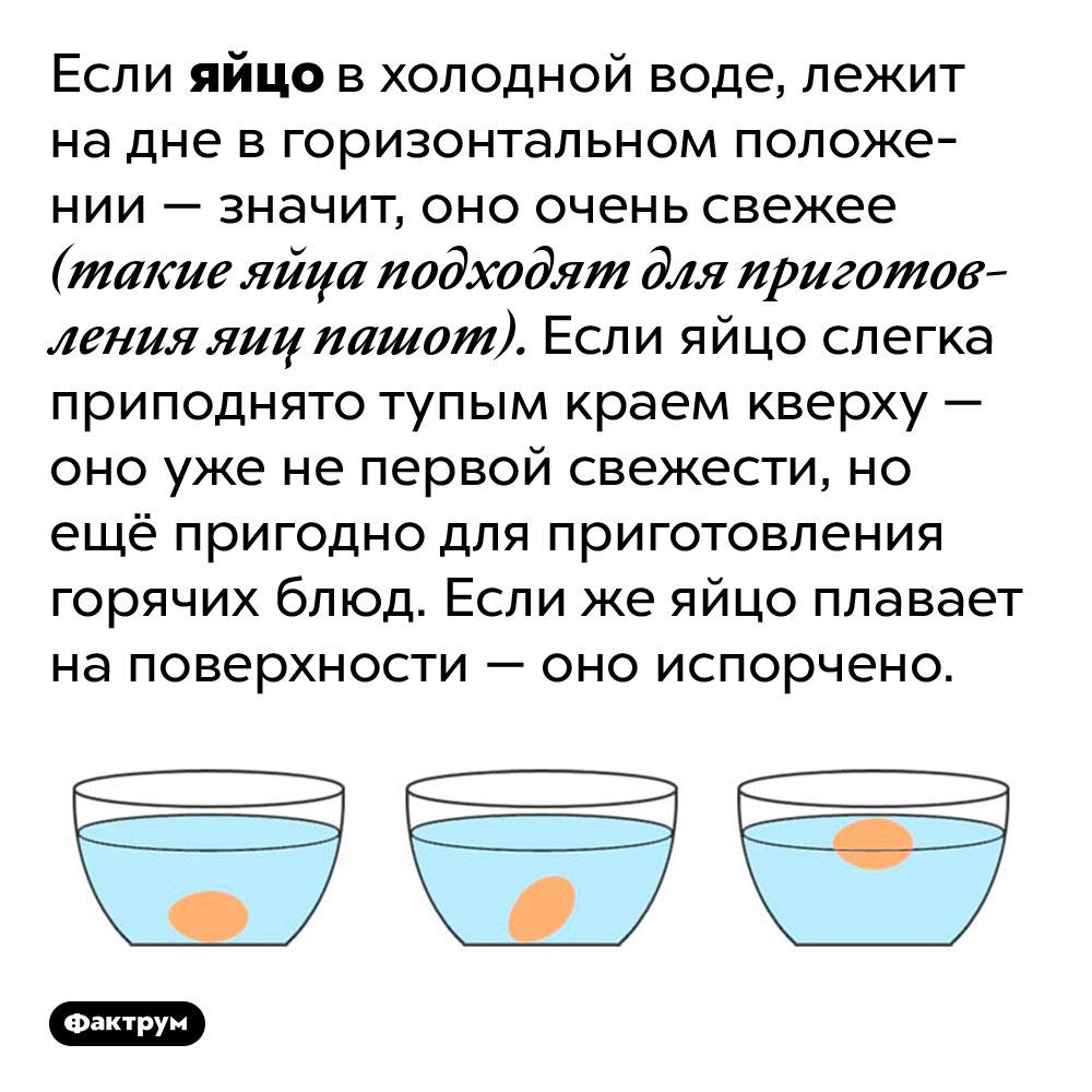 Свежее яйцо невсплывает вхолодной воде. Если яйцо в холодной воде, лежит на дне в горизонтальном положении — значит, оно очень свежее (такие яйца подходят для приготовления яиц пашот). Если яйцо слегка приподнято тупым краем кверху — оно уже не первой свежести, но ещё пригодно для приготовления горячих блюд. Если же яйцо плавает на поверхности — оно испорчено.