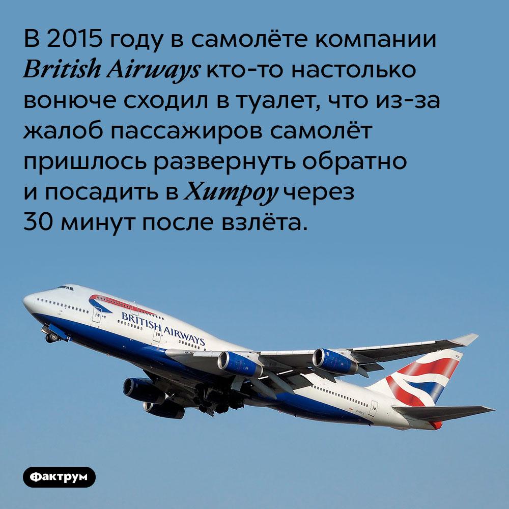 Посещение пассажиром туалета заставило самолёт вернуться ваэропорт. В 2015 году в самолёте компании British Airways кто-то настолько вонюче сходил в туалет, что из-за жалоб пассажиров самолёт пришлось развернуть обратно и посадить в Хитроу через 30 минут после взлёта.